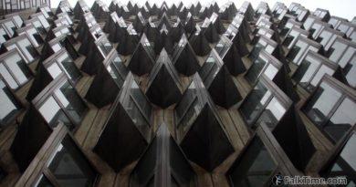 Thorn-like windows