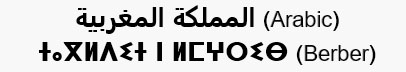 Arabic and Berber languages