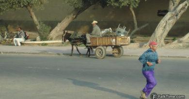 Intra-urban transport