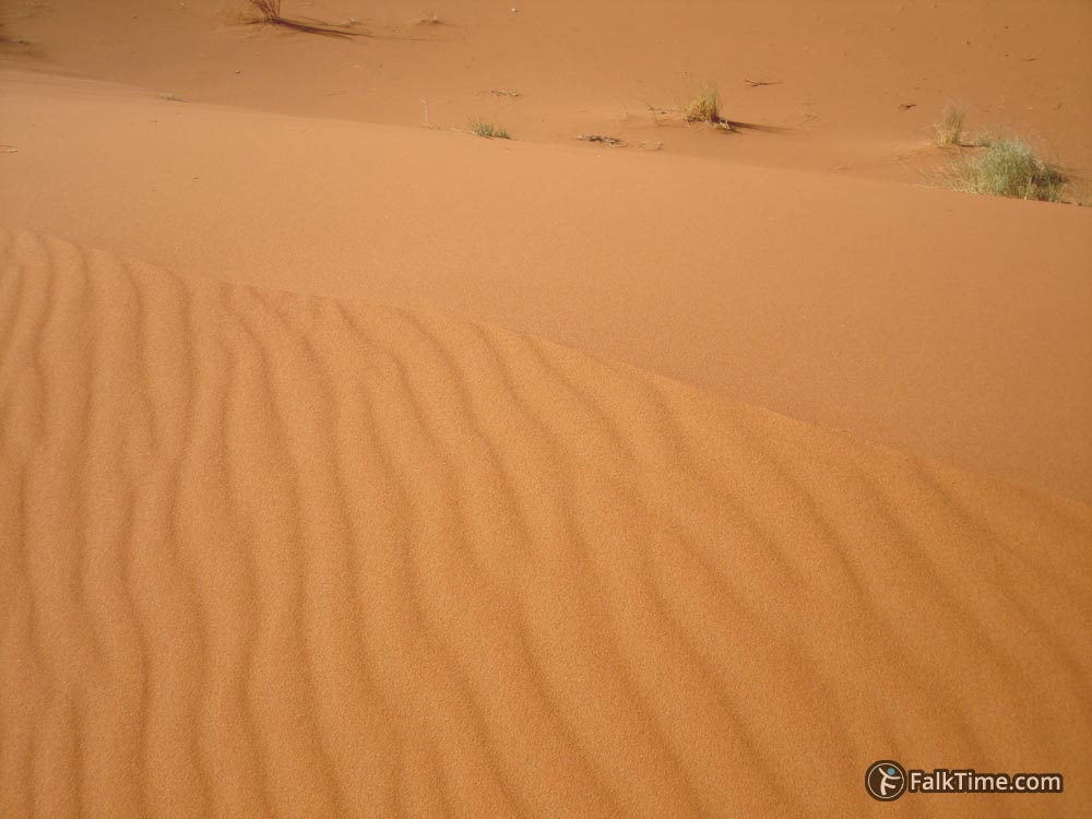 The top line of a dune