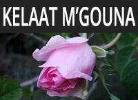 Kelaat MGouna