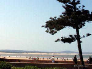 Tagart beach