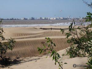 Sandy dunes at the beach